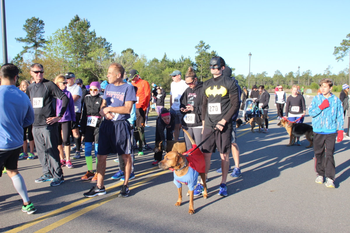 Hound Hustle 10k, 5k and Spot trot